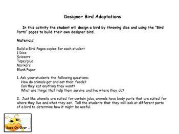 Designer Bird Adaptations