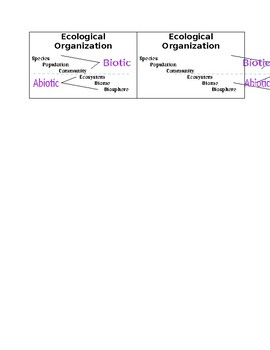 Desk Notes - Ecological Organization