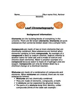Detailed Leaf Chromatography Lab Activity