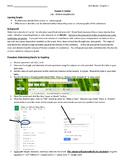 Determining Density Through Graphing