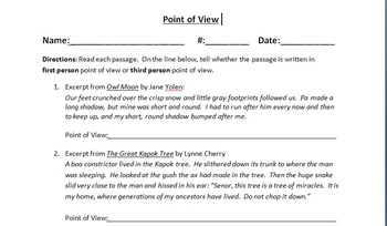 Determining First or Third Person Point of View