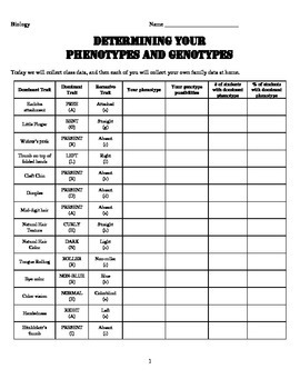 Phenotypes and Genotypes
