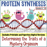Protein Synthesis Translation Activity | Printable or Digital Distance Learning