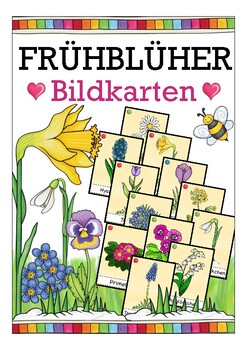 Deutsch: Frühblüher Bildkarten DAF, German flash cards, Natur, spring, seasons