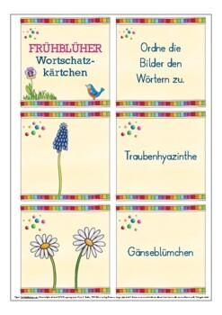 Deutsch: Frühblüher Spiel DAF, German flash cards, Natur, spring, seasons FREE!