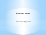Develop a model to illustrate hierarchical organization