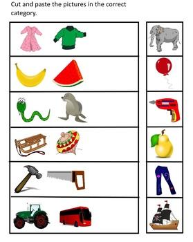 Classification Skills