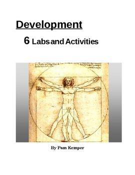 Development - Labs and Activities