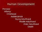 Development Power Point