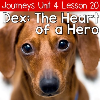 Dex: The Heart of a Hero Journeys Unit 4 Lesson 20 Supplemental Resources