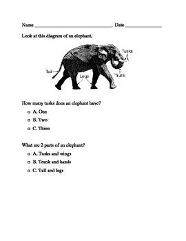 Diagram Formative Assessment