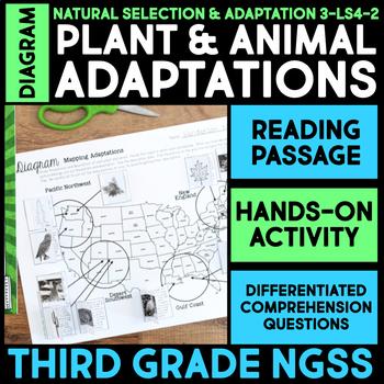 Diagram Regional Plant & Animal Adaptations - Science Station