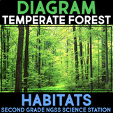 Diagram Temperate Forest Habitats - Second Grade Science Stations