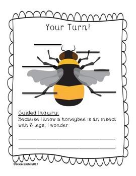 Diagram of Honeybee Alberta