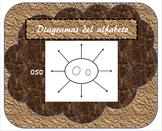 Spanish Alphabet Diagrams/Diagramas del alfabeto