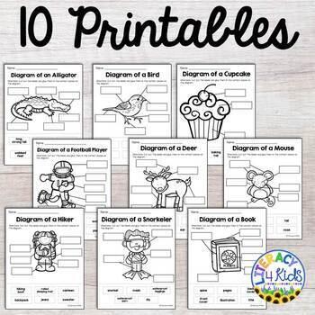 Labeling Diagrams Printables