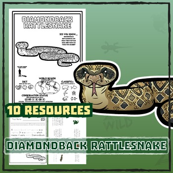 Diamondback Rattlesnake -- 10 Resources -- Coloring Pages, Reading & Activities