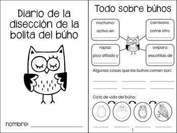 Diario de la disección de la bolita del búho - Owl Pellet Lab Journal in Spanish