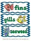 Diary of a Fish: science, writing, vocabulary, and printables based on CCSS