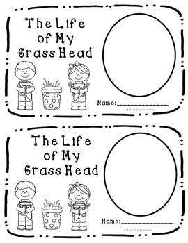 Diary of a Grass Head