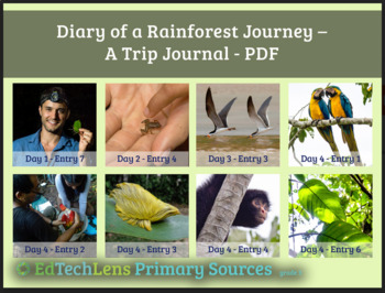 Diary of a Rainforest Journey - A Primary Source PDF FREE CONTENT