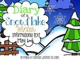 Snowflake Water Cycle Wilson Bentley Informational Text In