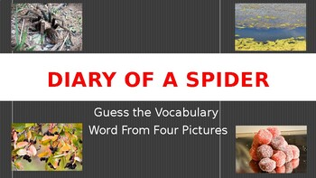 Diary of a Spider-Guess the Vocabulary Word from Four Pictures
