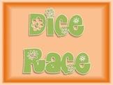 Dice Race - math game