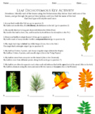 Dichotomous Key Bundle - Taxonomy - Life Science