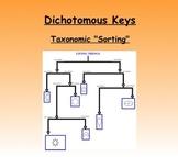 Dichotomous Key Activity