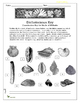Dichotomous Key: Classification Key for Shells of Mollusks