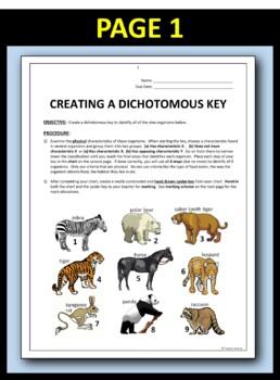 Dichotomous Key - Create A Dichotomous Key Activity {Editable}