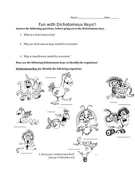 making a dichotomous key activity