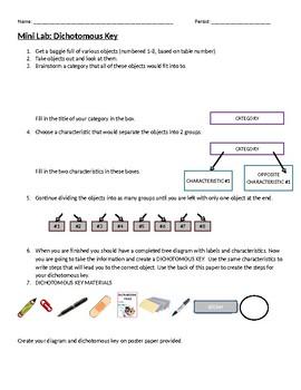 Dichotomous Key Mini Lab