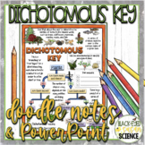 Dichotomous Key Squiggle Sheets & Understanding Checkpoint