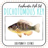 Dichotomous Key Worksheets: Fish Identification and Key Bu