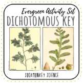 Dichotomous Key Worksheets: Tree Identification Lab and Key Building Activity
