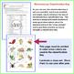 Dichotomous Classification Key