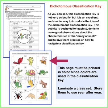 dichotomous classification key by amy brown science tpt. Black Bedroom Furniture Sets. Home Design Ideas
