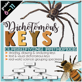 Dichotomous Keys Insects Project