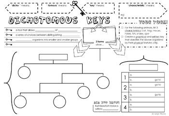 Dichotomous Keys Doodle Notes
