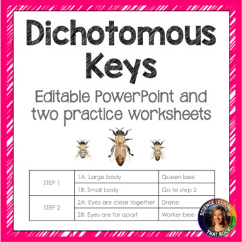 Dichotomous Keys Powerpoint and Worksheets