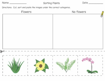 Dichotomous Sorting: a simple introduction for young learners