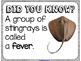 Did You Know? Fun Facts For Your Classroom {Animal Group Names}