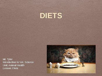 Diets Lesson PowerPoint