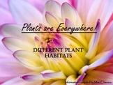 Different Plant Habitats