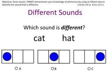 Different Sounds-A Phonemic Awareness Lesson