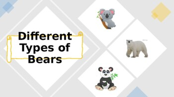 Different Types of Bears