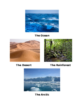 Different Types of Environment