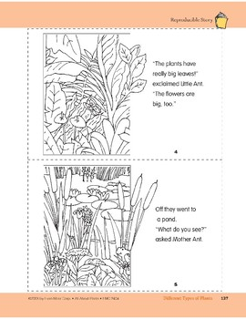 Different Types of Plants: Take-Home Book